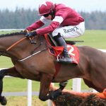 Grand National Runners Guide 2018